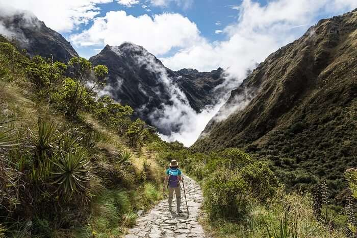Cover For Inca Trail
