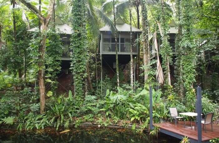 Daintree Eco Spa & Lodge