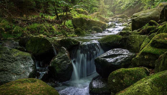 Dharamkot Waterfalls