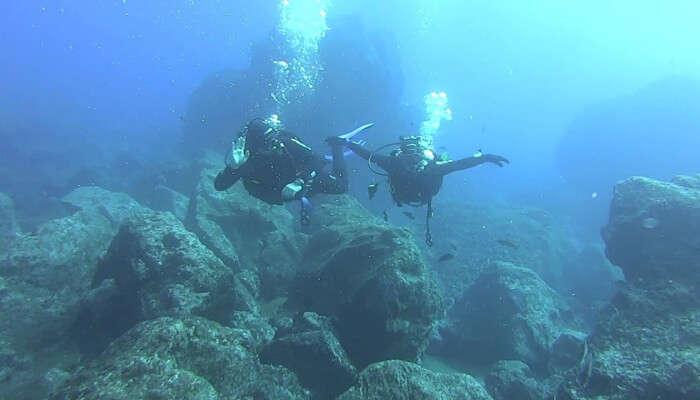 Madeira Diving Center View