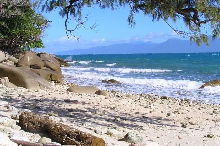 Fitzroy-Island