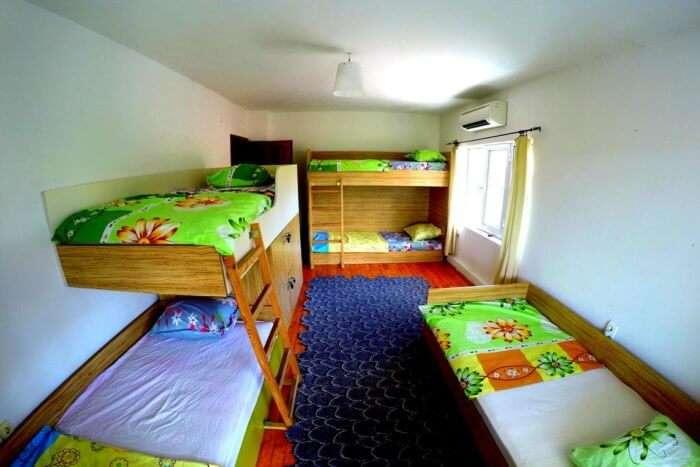 Funky Monkey Hostel
