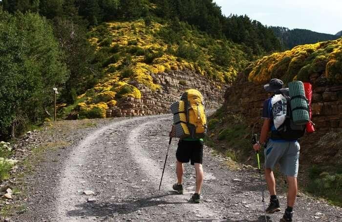 Hike Huayna Picchu