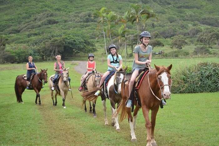 Horseback Riding Lessons at Khao Lak Horse Club