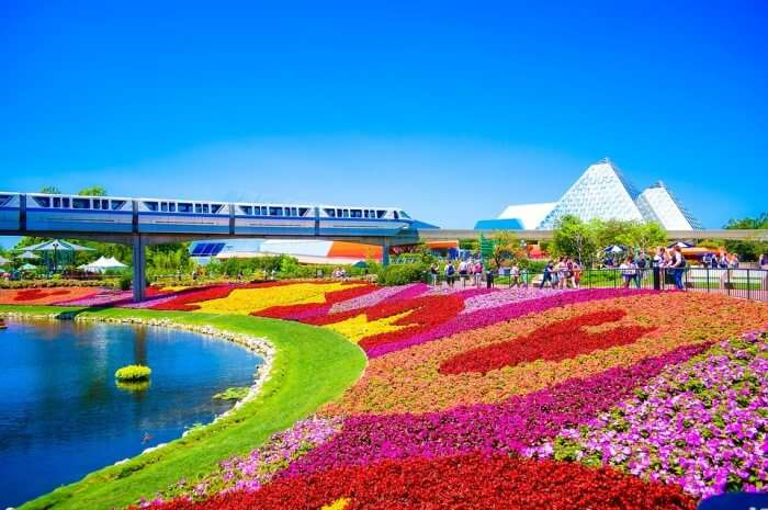 Fun Earth Garden Parks Flowers Orlando Florida