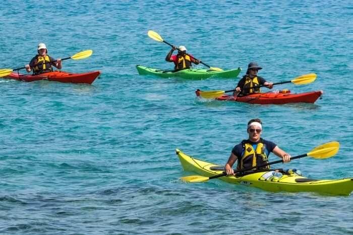 Kayak through mangroves