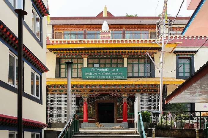 library in dharamshala