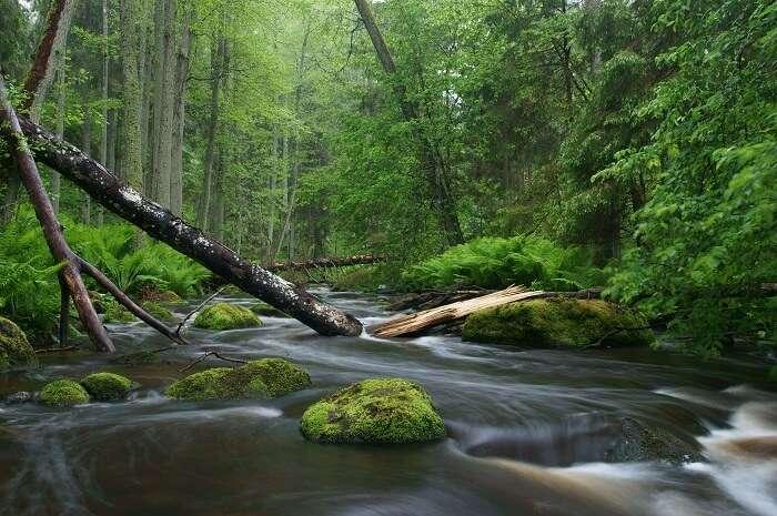 National Parks & Nature Reserves