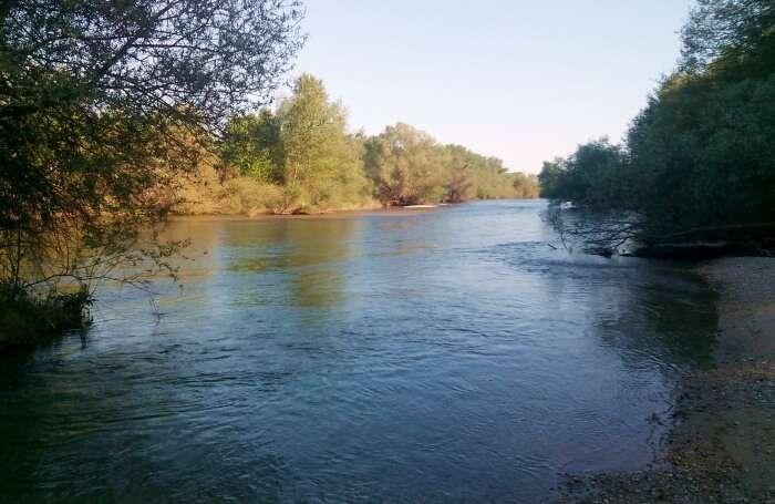 Nestos Delta