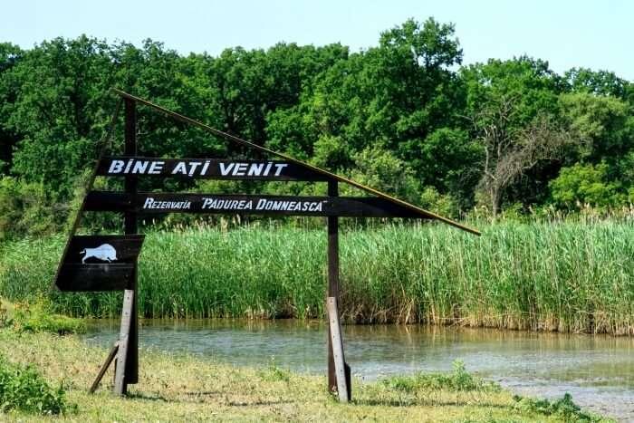 Padurea Domneasca Natural Reservation