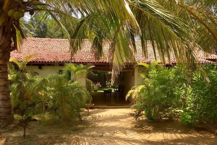 Palagama Beach Resort