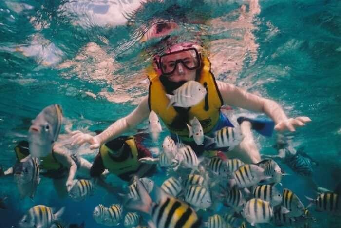 Pro Dive Centre