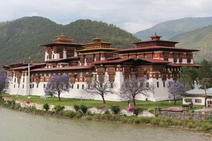Punakha Damji