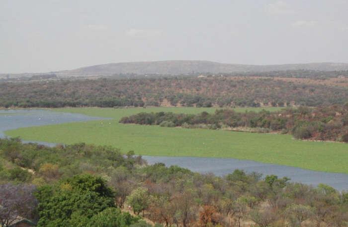 Roodeplaat Dam Provincial Nature Reserve