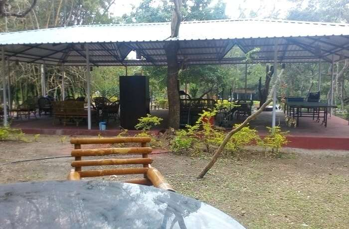 Safari Land Farm & Guest House