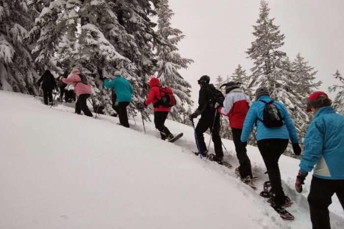 Snowshoe hiking and trekking