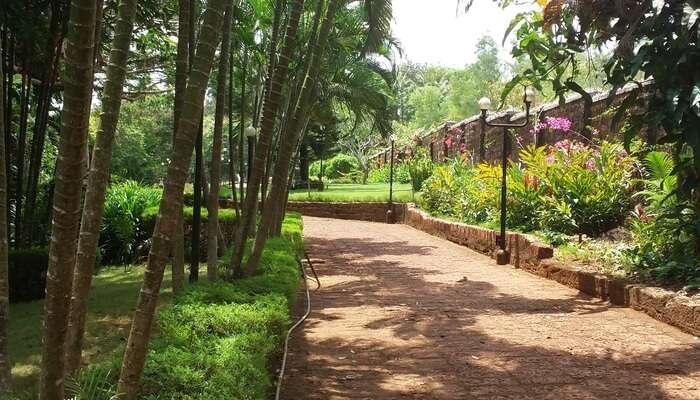Stop by Dry Zone Botanic Gardens