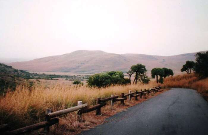 Suikerbosrand Nature Reserve view