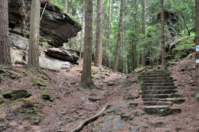 The Mullerthal Trail