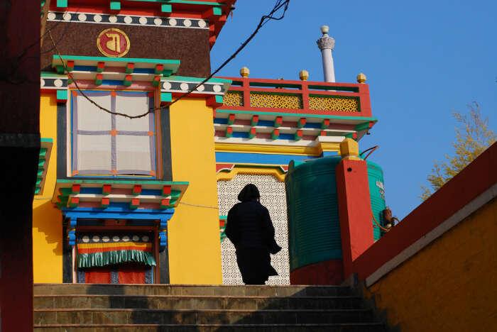 Tashi Jong Monastery View