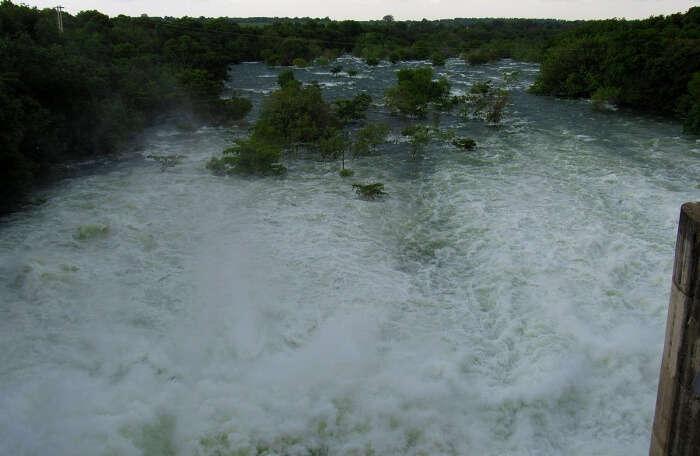 Walawe river safari