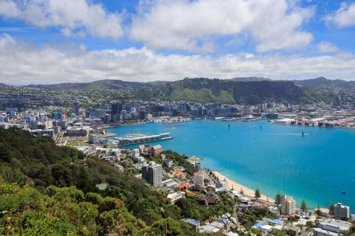 Wellington In Winter