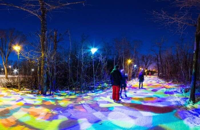 Winter Magic In Canada