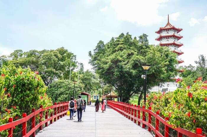 Best Things to do in Jurong East