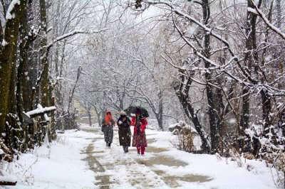 snowfall in uttarakhand 2019 cover