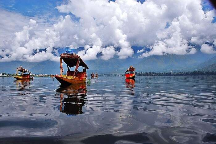 shikara on dal lake