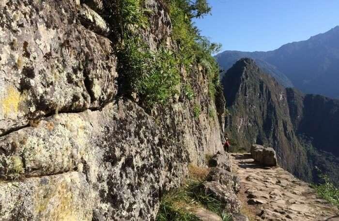 Trail Leading To Machu Picchu