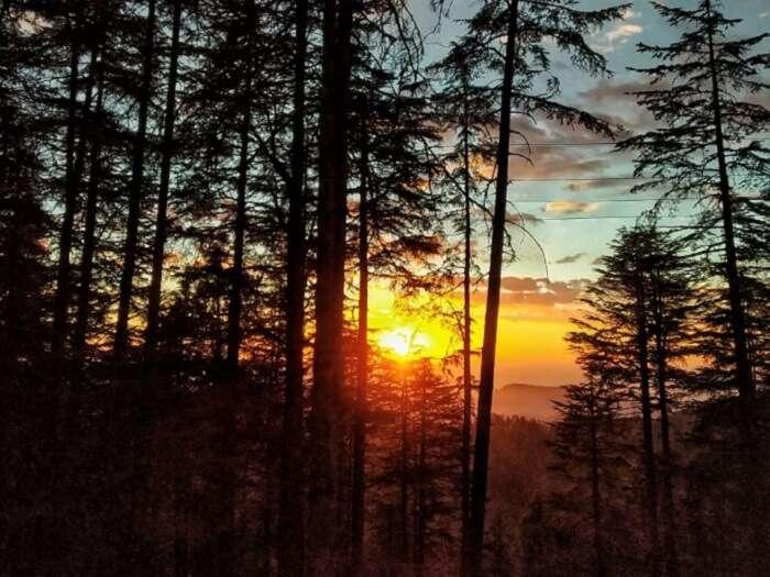 Shimla early morning