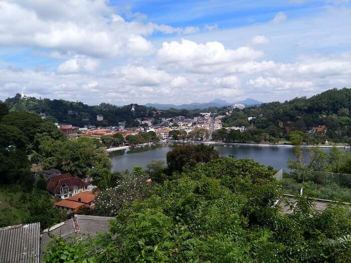 view of the kandy city