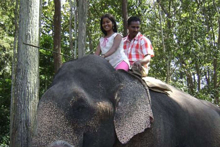 Couple Sitting On Elephant