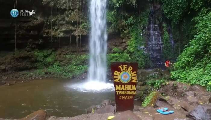Mahua Waterfall View