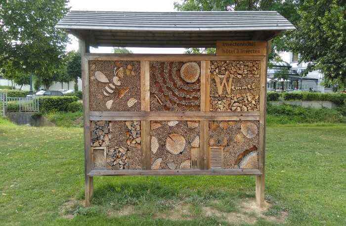 Micropolis Cite des Insectes