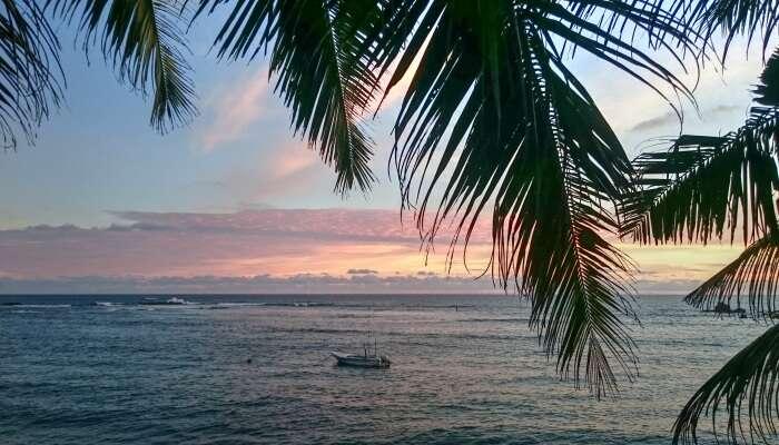 evening in a beach