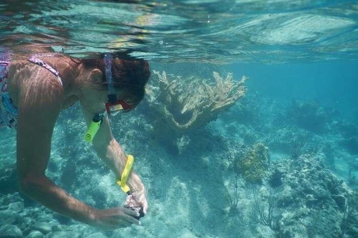 Nisida Reef