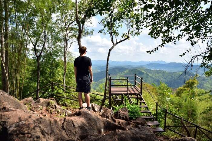 person looking from the peak in the park