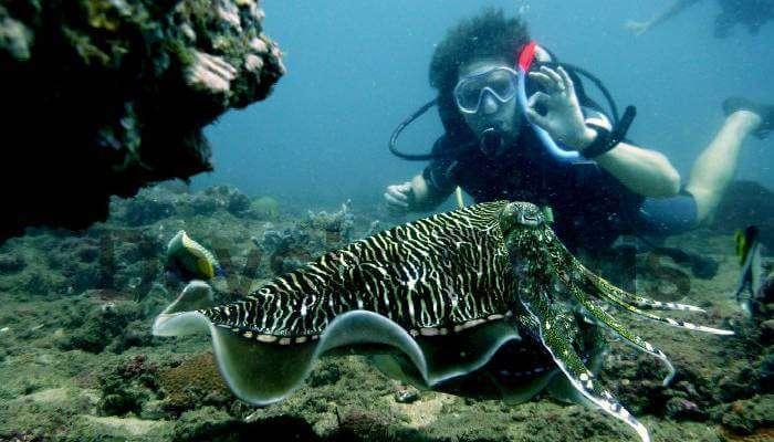 Scuba Diving in Sri Lanka_23rd oct