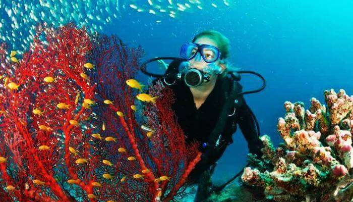 Scuba Diving in Thailand_23rd oct