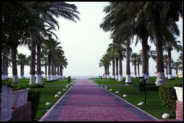 Sealine Beach Resort
