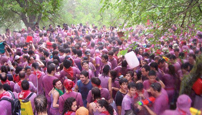Haro Wine Festival in Spain