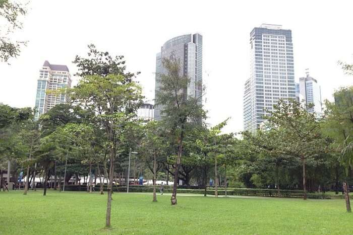 The Ayala Triangle Gardens