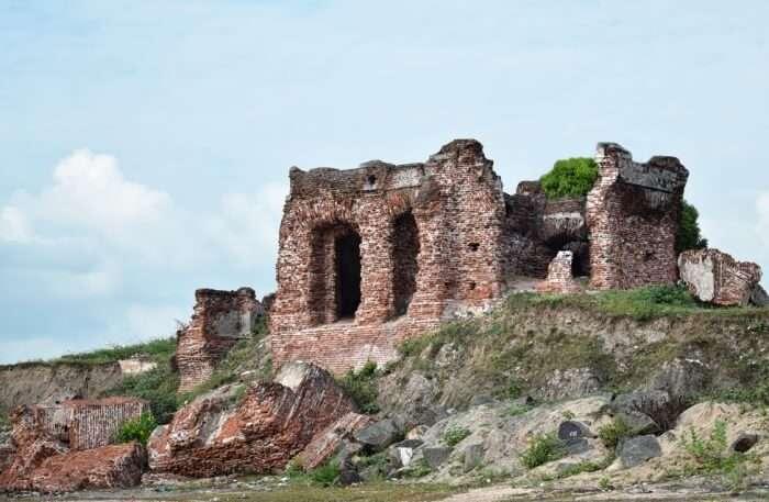 The Doric At Arippu
