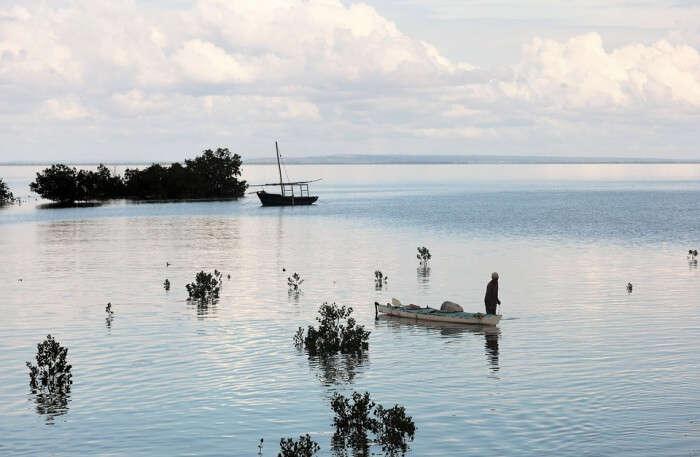 Ibo Island Mozambique Fishing