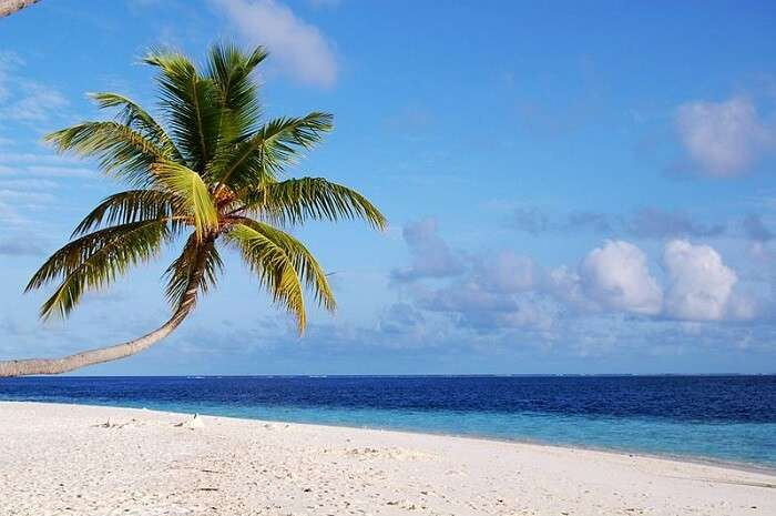 view of a beautiful beach in maldives