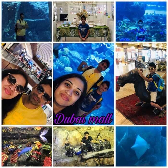 dubai mall tour with family
