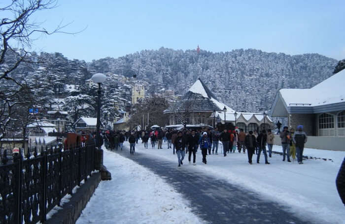 visit Shimla for honeymoon