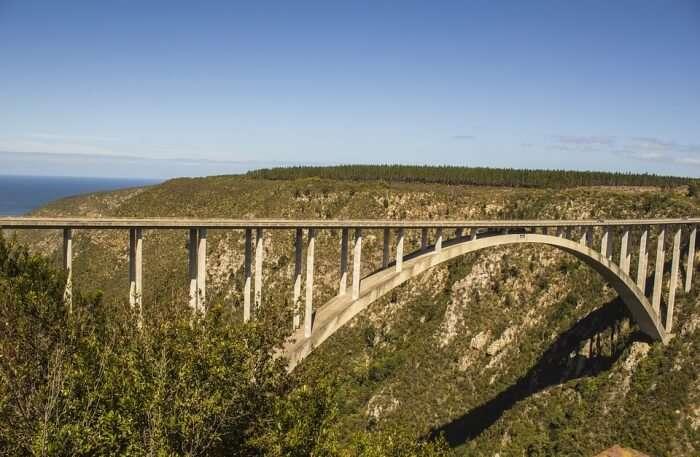 About The Bloukrans Bridge